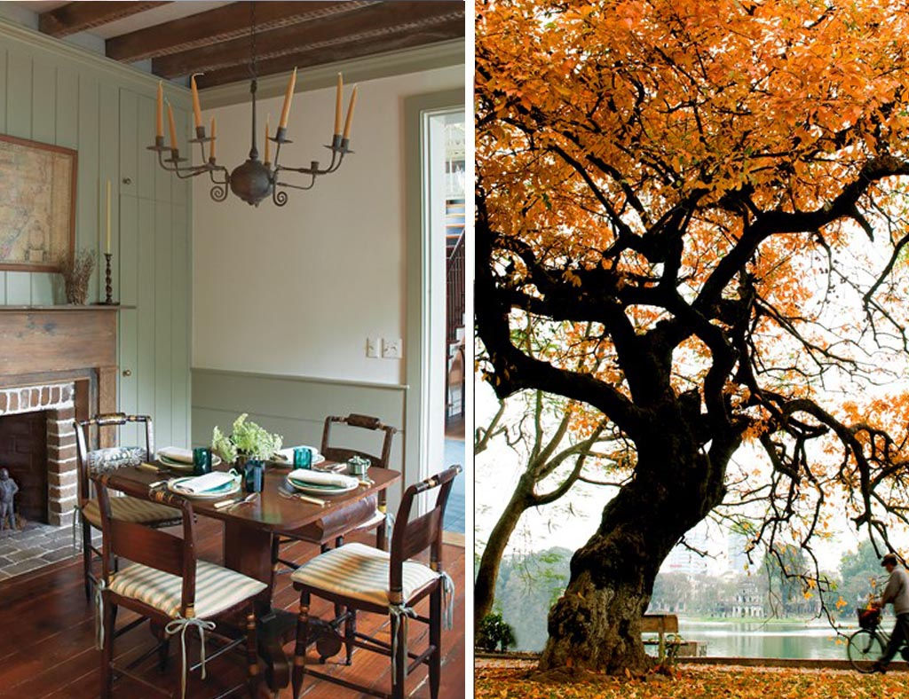 Fall Inspired Interior Design Rooms
