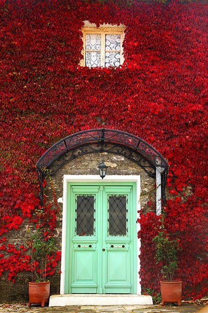 Red Leaves Green Door
